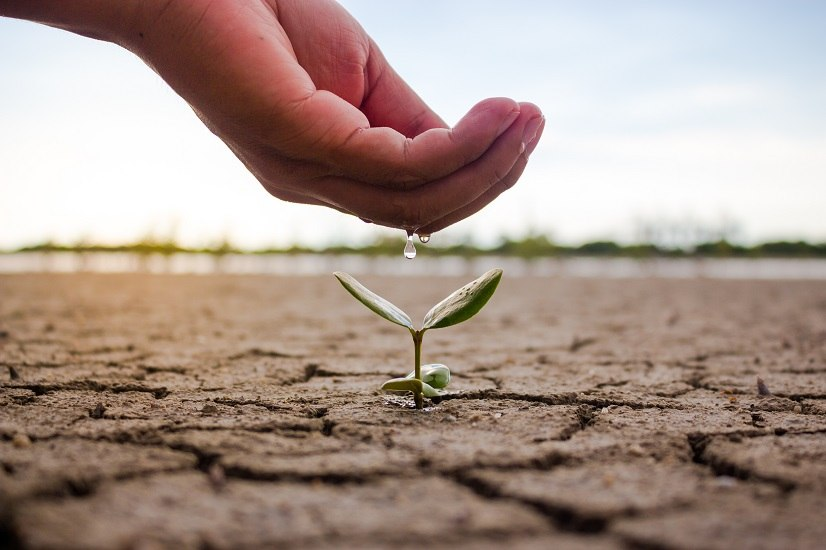 Soluzioni anti spreco: come garantire il risparmio idrico in estate