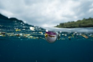 inquinamento-plastica-erogatore-acqua-per-casa